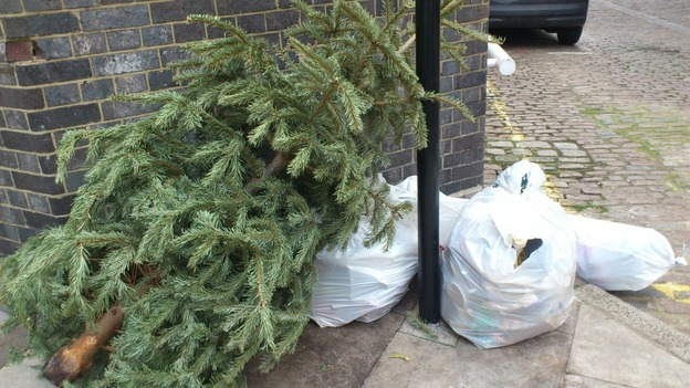 Christmas tree thrown out with rubbish